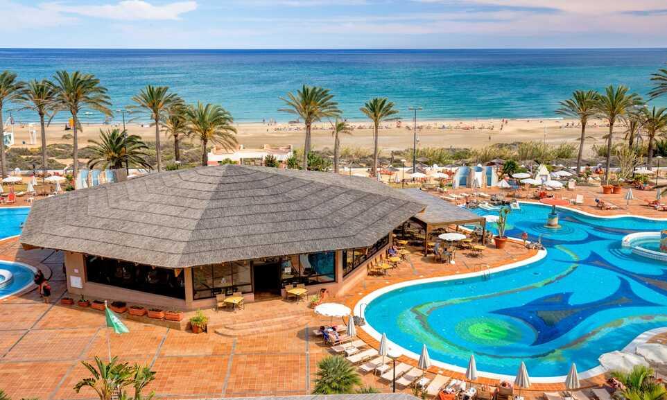 Costa Calma的圖片搜尋結果