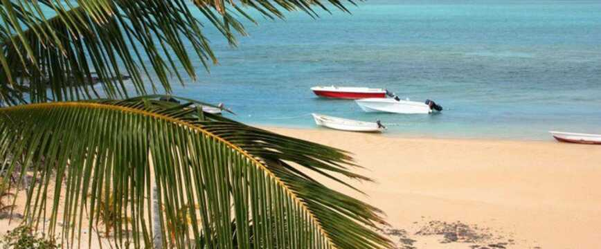 Semester Mauritius